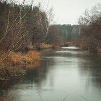 Осень :: Andrey Olenich