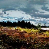 Ветренный день на Глухом озере :: Иван Миронов