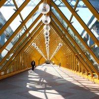 На мосту :: Karina Sholokhova