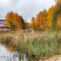 Осень,осень.... :: Александр Селезнев