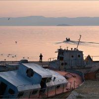 Байкальский берег :: Любовь