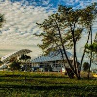 Сочи. Олимпийский парк. :: victor maltsev