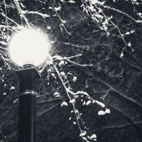 Ночь, улица, фонарь ) :: Anna