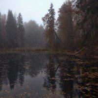 Старый пруд :: Дмитрий Булатов