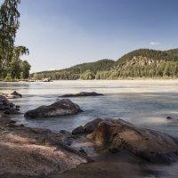 Река Катунь :: Евгения Каравашкина