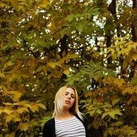 Осень... :: Ксения Казимирова
