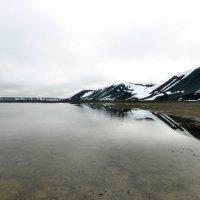 Предгорное озеро :: Алексей Логинов