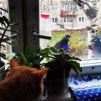 Привет, а мы в гости, открывай... :: Елена Федотова