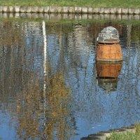 Птичий домик на воде :: Наталья Александрова