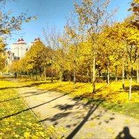 Осень в уручьском парке :: Dmitriy Stoyanov