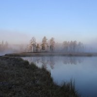 Туман. :: Андрей Скорняков