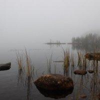 На озере. :: Андрей Скорняков