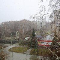 Шёл снег . :: Мила Бовкун