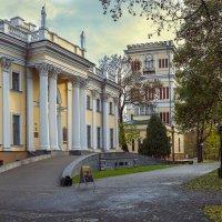 Дворец Румянцевых и Паскевичей :: Сергей Соболев