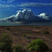 На подступах к пустыне Негев... :: Владимир Гойзман