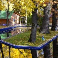 Осенью :: Сергей