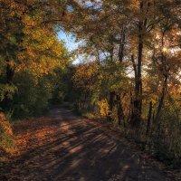 Вечерняя дорога домой. :: Андрей Романов