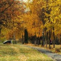 Золотая осень в городе :: Ирина Приходько