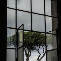 Вид из окна :: Людмила Синицына
