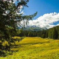 Вид на гору Боботов Кук :: Gennadiy Karasev