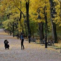 Осенний фотосет :: john dow