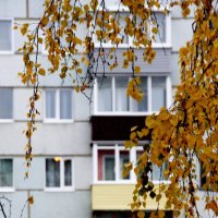 Три осенних  лоджии... :: Валерия  Полещикова