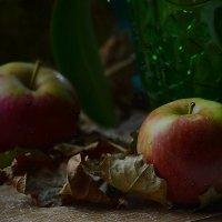 Яблоки на листьях :: Валерий Лазарев