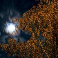 Сквозь волнистые облака, пробивается луна :: Алексей