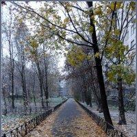 Дорога к зиме :: vadim