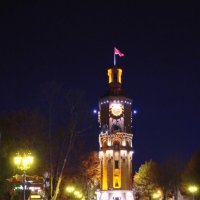 пожарная башня :: юрий иванов