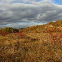 Уж небо осенью дышало... :: Ирина Подольская