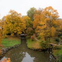 Осень :: Viktor Schnell