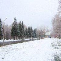 Моя улица . :: Мила Бовкун