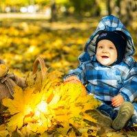 Золотая осень - золотая! :: Natalia Merkotan