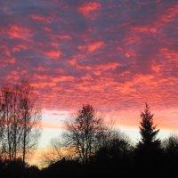Розовый закат :: Mariya laimite