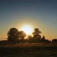 Летний вечер в деревне :: Татьяна Кретова