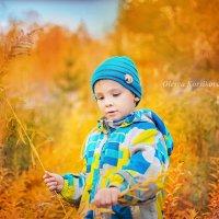 Осень :: Олеся Корсикова