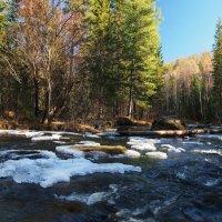 Горная река в Сибири... :: Александр Попов