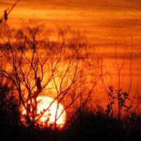 Закат похожий на рассвет :: Mariya laimite