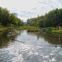 пара на реке кормит уток :: megaden774