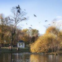 Кормление птиц в Екатерининском парке :: Михаил Онипенко