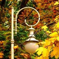Осенний фонарь :: Сергей Карачин