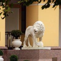 Белогривый лев :: Вера Моисеева