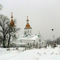 Храм Петра и Павла :: Александр Алексеев