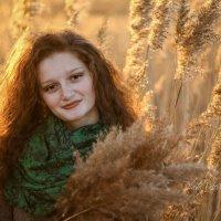 осенний портрет :: Tatyana Belova