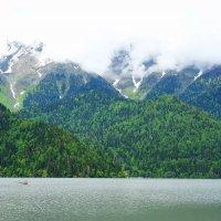 Рица - горное озеро ледниково-тектонического происхождения на Западном Кавказе, в Гудаутском районе :: Елена Павлова (Смолова)