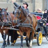 туристы в Дрездене :: Ольга Богачёва