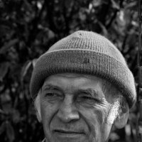В деревне :: Дмитрий Кузнецов