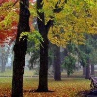 Осень в городе :: Vladimir Lisunov