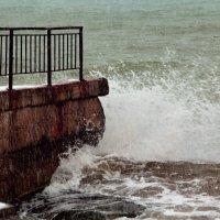 февральское море :: елена tkacheva